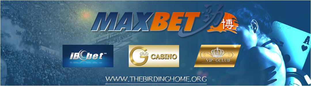 วิธีหาเงินง่ายๆผ่าน maxbet และ ibcbet พร้อมทางเข้า gclub คาสิโนออนไลน์